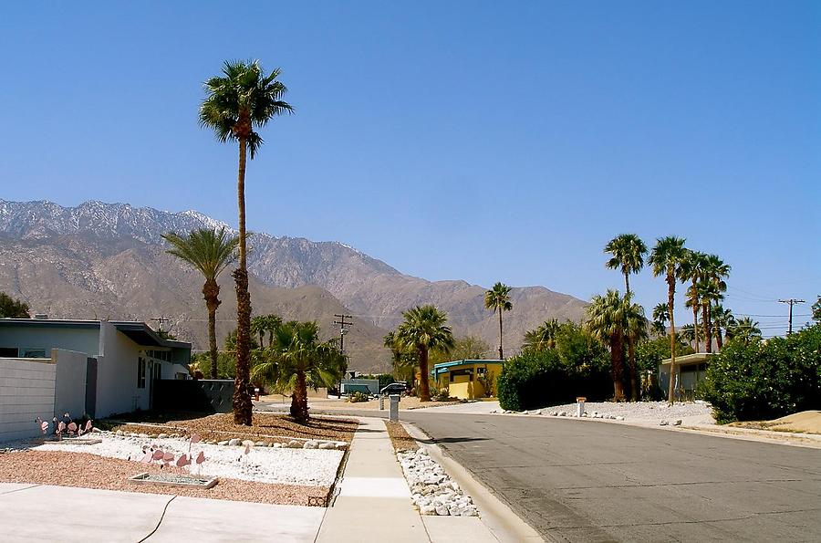 Palm-Springs_2_defaultbody