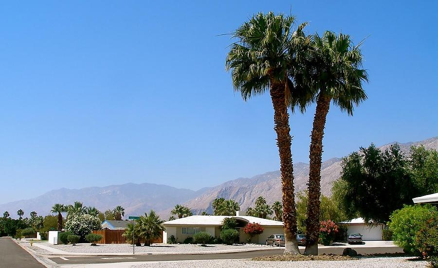 Palm-Springs-2_1_defaultbody