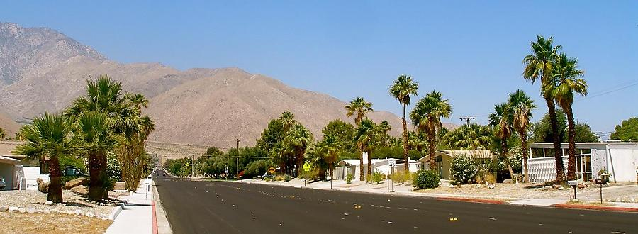 Palm-Springs-2_4_defaultbody