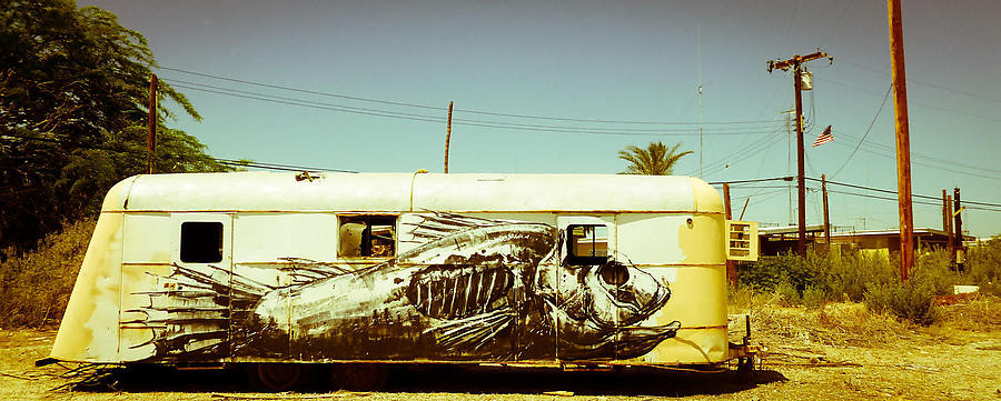 Salton-Sea-2_2_defaultbody